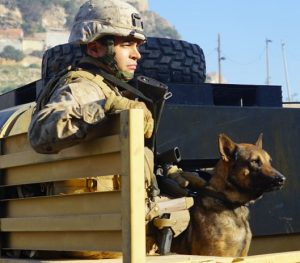 photo Ramon Rodriguez in Megan Leavey